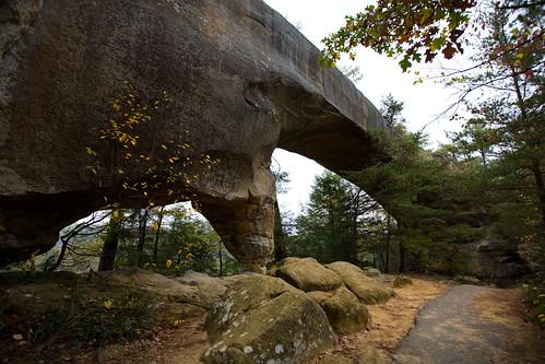autumn graffiti ky skybridge trail redrivergorge