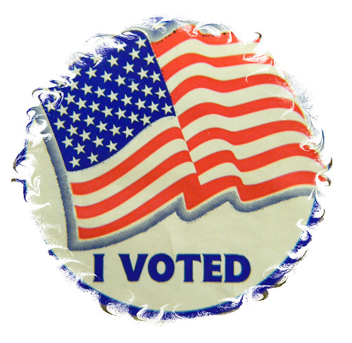 I Voted | by Wayfaring Wanderer