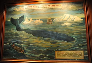 Great Blue Whale at Antarctica, An allegorical sighting by crew of HMS Resolution January 1773 – 2nd voyage, painting by Armond M. Kirshbaum 1975, main floor hallway, Anchorage Captain Cook Hotel, Anchorage, Alaska, USA