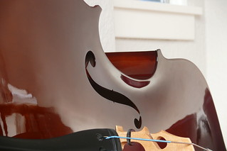 Double Bass | by topfunky