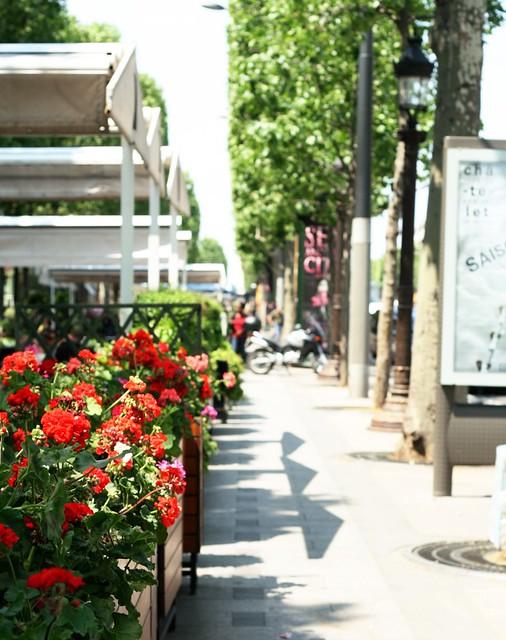 Soleil et fleurs sur les Champs Élysées