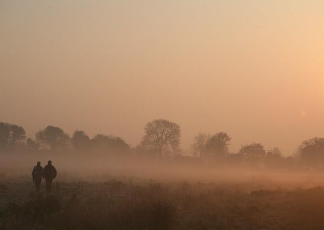 Dawn Walkers