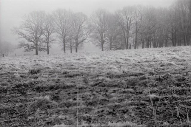 winter box III