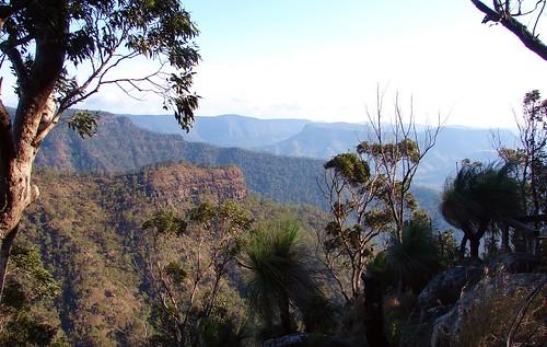 geotagged nationalpark view hiking australia lookout bushwalking geotag lamingtonnationalpark
