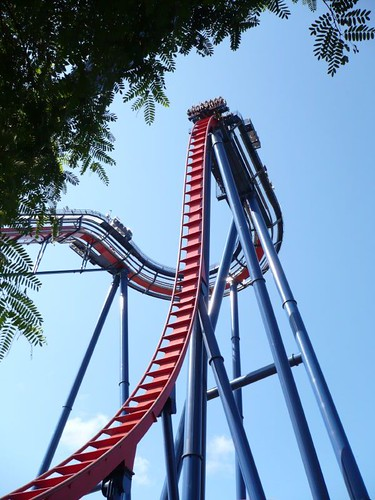 Sheikra at Busch Gardens, Tampa, just before I plunged 200 feet | by Brian Marshall