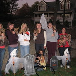 Yorkie Meetup Group Halloween Picture