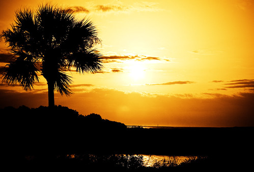sun sunrise bravo searchthebest florida palm soe takeabow saintaugustine supershot golddragon mywinners picturestosmileabout theperfectphotographer thebestpicturegallery spiritofphotography