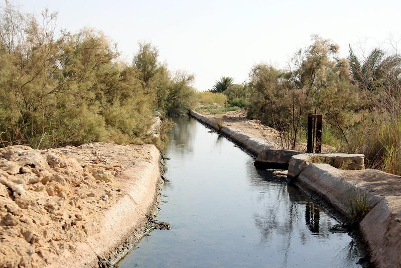Irrigation Canal near Siwa