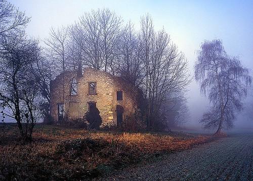 Morning mist on the ruin