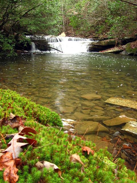 Unnamed Cascades, Virgin Falls, White Co, TN