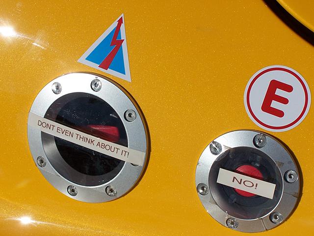 Lotus detail.jpg
