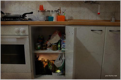 Visioni domestiche | by dadevoti