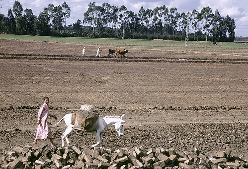 EG001S19 World Bank | by World Bank Photo Collection