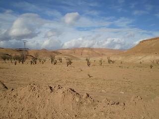 Western Sahara desert | by oft-quoted Mandrake Silvertongue