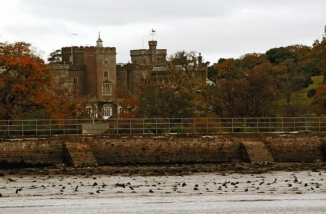 Exe Estuary - Powderham Castle