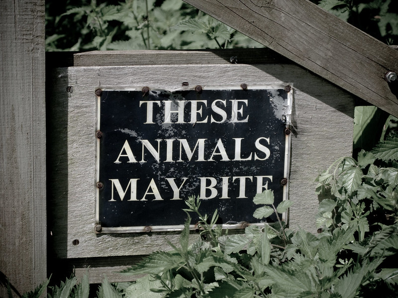 These Animals May Bite