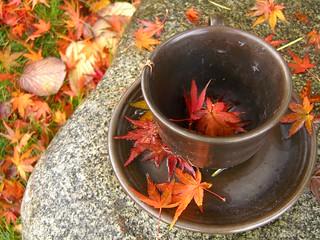 my cup of tea | by dreamsjung
