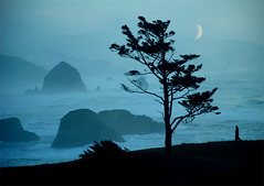 ocean's lament | by Gold Field