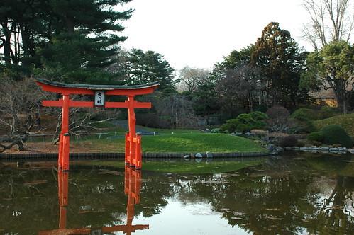 Pond and Torii   by Flatbush Gardener