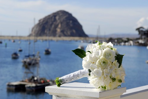 The Rock and Boquet | by Extra Medium