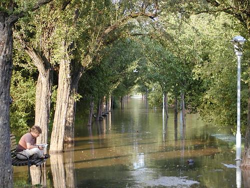 Hochwasser am Rosengarten Dresden, ein segensreich erhabnes Menschenbild, so klug wie gütig, so gerecht wie mild. Mir aber, schreitend hier am Seegestad, begegnet sie auf einsam stillem Pfad und sieht mit ihrem hellen Blick mich an, der jedem wohltat, der ihr durfte nahn 033