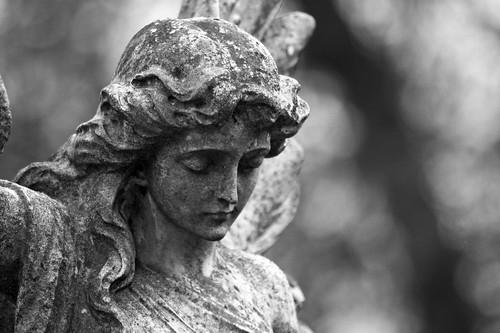 Angel study | by pic fix