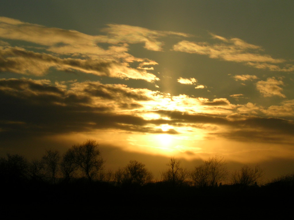 Late sun Pulborough Brooks. Pulborough Circular