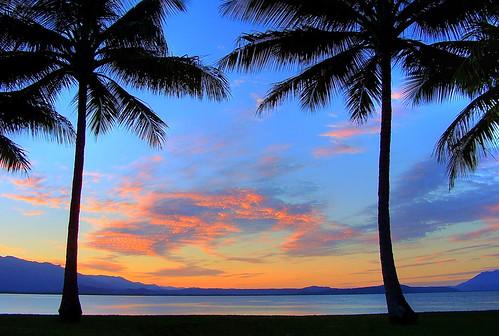 sunset palms sunsets australia queensland portdouglas reflexions tropics coconutpalm coconuttrees northqueensland fourmilebeach visiongroup treesubject colourartaward llovemypics vision100 skycloudsunni 10favesormore