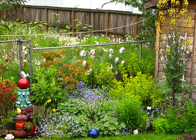 My Garden Looking Lush