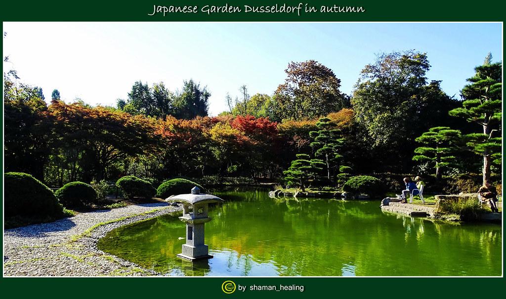 Japanischer Garten Düsseldorf Im Herbst Japanese Garden D Flickr