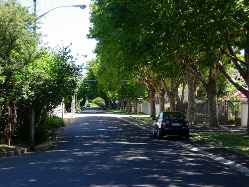 Leafy suburban street | by StrawberryFrog