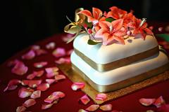 Previous: The Cake