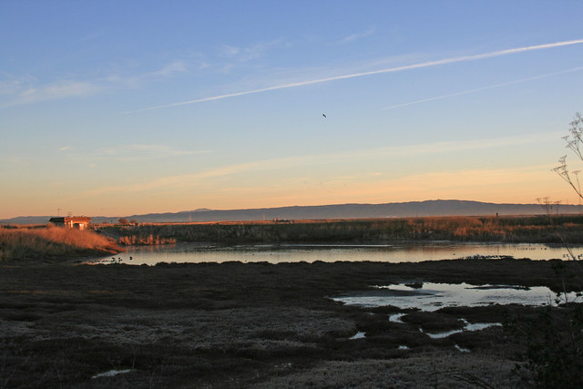Sunrise on the Palo Alto Baylands