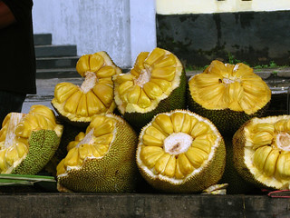 jackfruit | by alaya