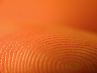 Fingerprint | by kevin dooley