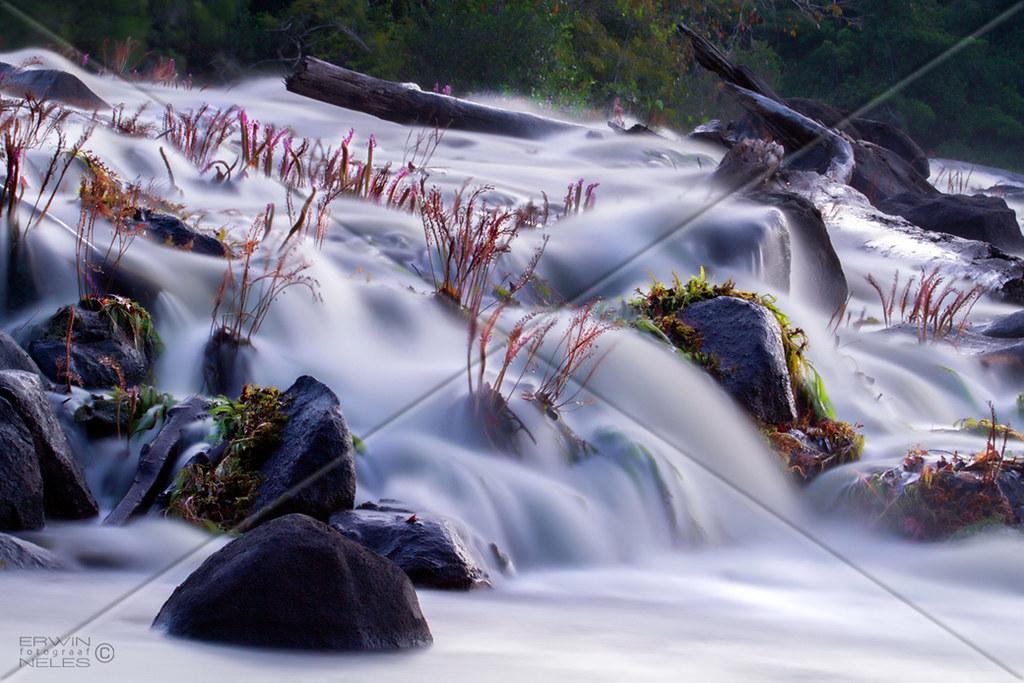 RIVER RAPID WATERFALL GRANRIO SURINAM AMAZONE SOUTH-AMERICA