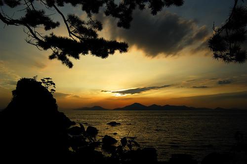 ocean sunset sea sky beach water silhouette pinetree clouds nikon korea busan southkorea 꽃지 kfa dadaepo 10faves af1835