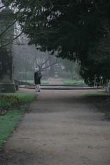 Botanical gardens, cold day