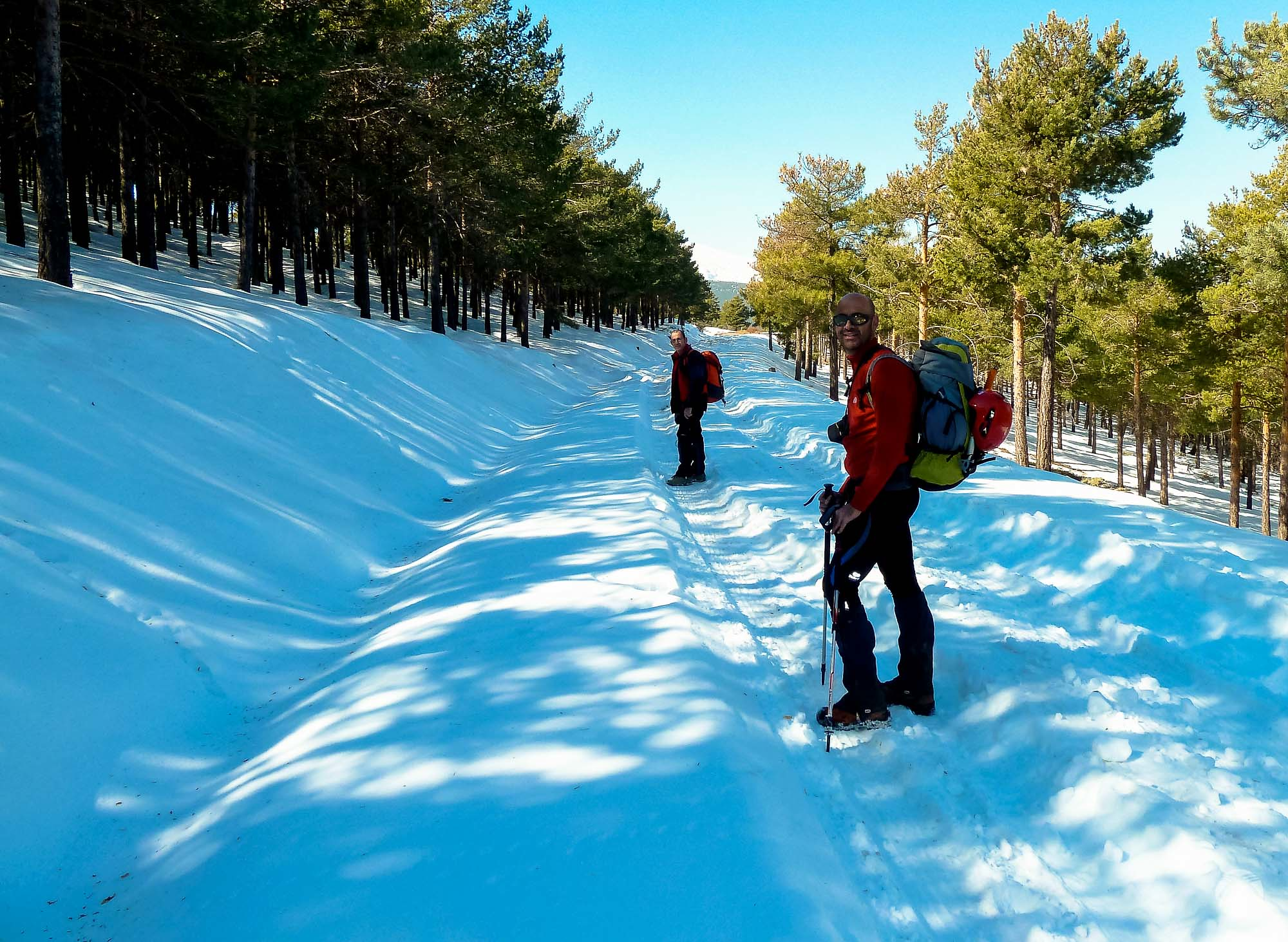 Pista forestal con mucha nieve
