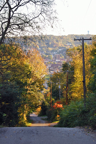 autumn fall leaves pennsylvania fallcolors pa ellwoodcity nikond40x