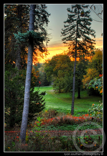 orange green yellow forest sunrise landscape high woods nikon dynamic ryan hill d200 cranbrook range hdr highdynamicrange 2007 bloomfield bloomfieldhills metrodetroit photomatix cranbrookschool nikond200 southen ryansouthen cranbrookmuseum expdet02theme