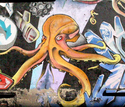 "OCTOPUS | by Gonz@k ""The crazy cat"""