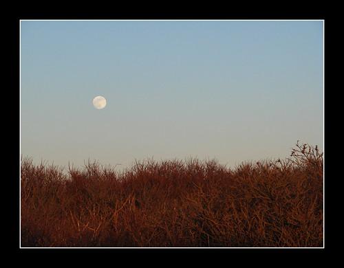 sky moon island massachusetts moonrise rise westport gooseberry gooseberryisland
