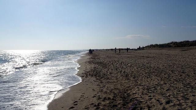 Contre-jour sur la plage Ouest.....