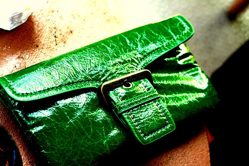Green with envy bag   by texantiff23