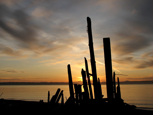 sunrise olympicpeninsula driftwood pugetsound washingtonstate fortflagler admiraltyinlet grundlepuck marrowstoneisland fortflagerstatepark