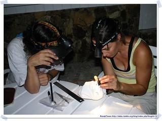 20041018_Guana@BVI_Bat  Netting_001_A | by rosstsai