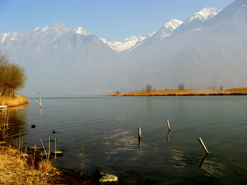 antonella del lago