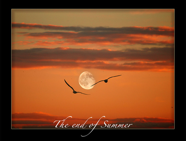 Flying to the moon..
