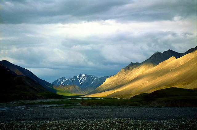 Alaska,ANWR,Canning river,d2